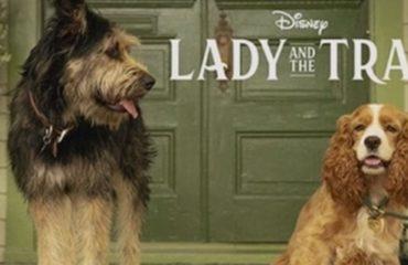 La dama y el vagabundo. Vuelve el clásico a Disney Plus